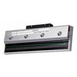 Cabeça Impressão TTP-246M Pro 203 dpi
